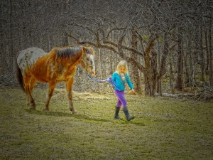 The little girl awakens to find the Old Horse