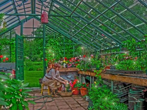 In the Glass Greenhouse working with the fairies.