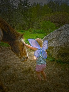 Have you hugged your fairy horse today 11 2014 (9)_788x1050