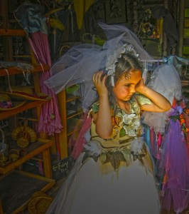 seamstress to the fairies (1)