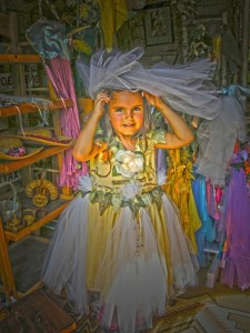 seamstress to the fairies (2)