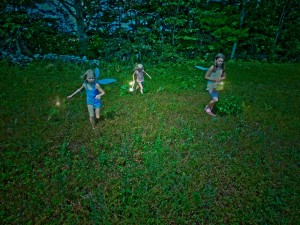 Blueberry Fairy Pickers (1)