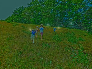 Blueberry Fairy Pickers (2)
