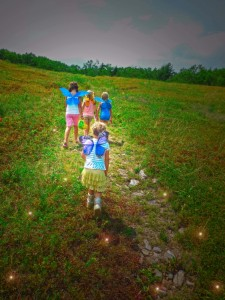 Blueberry Fairy Pickers (6)