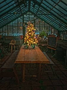 Greenhouse Fairy Tree (1)