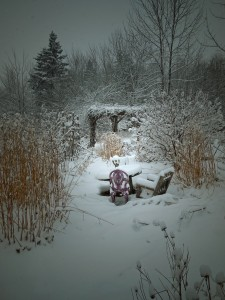 where do the fairies go when it snows (6)