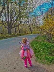 another fairy fine morning blog  (1)