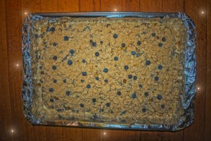 Blueberry Bars (10)