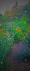 Within the Heart of an August Garden (3)
