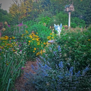 Within the Heart of an August Garden (4)