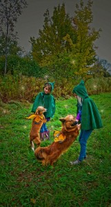 Apple picking Gnomes w dogs (1)