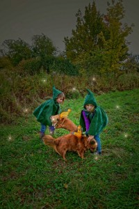 Apple picking Gnomes w dogs (2)