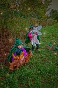Apple picking Gnomes w dogs (3)