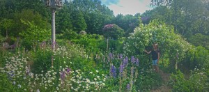 In the Garden of Possibility  (2)